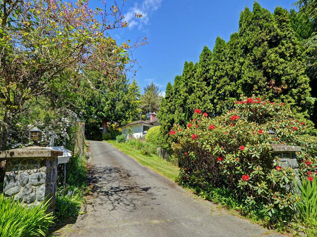 Photo 14: 3980 Locarno Lane in VICTORIA: SE Arbutus Single Family Detached for sale (Saanich East)  : MLS® # 378765