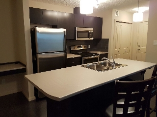 Main Photo: 504 Albany Way NW in Edmonton: Condominium for rent (Edgerton)