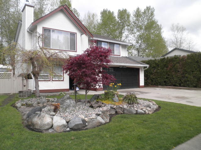 Main Photo: 23843 119A Avenue in Maple Ridge: Cottonwood MR House for sale : MLS® # V1116745