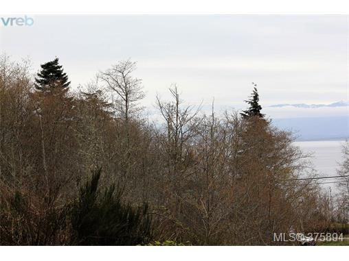 Main Photo: Lot B West Coast Road in SOOKE: Sk West Coast Rd Land for sale (Sooke)  : MLS® # 375894