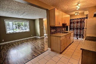 Main Photo: 1492 LAKEWOOD Road W in Edmonton: Zone 29 Townhouse for sale : MLS® # E4076648
