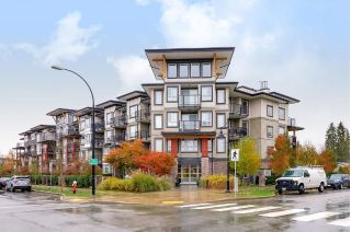 Main Photo: 211 12075 EDGE Street in Maple Ridge: East Central Condo for sale : MLS® # R2222263
