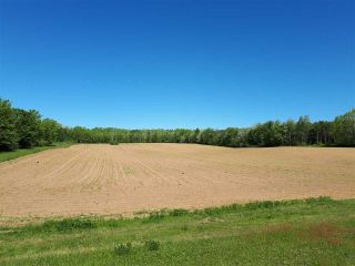 Main Photo: Chase Road in South Berwick: 404-Kings County Vacant Land for sale (Annapolis Valley)  : MLS®# 201814164