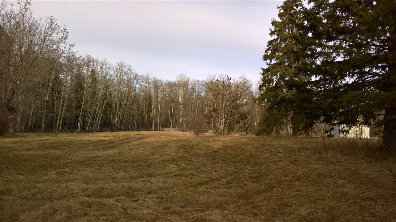Photo 6: 51109 RGE RD 261 Road: Rural Parkland County Rural Land/Vacant Lot for sale : MLS(r) # E4061847
