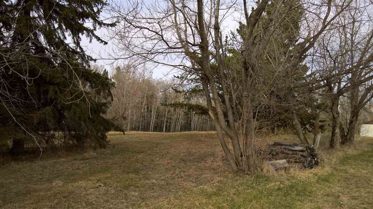 Photo 5: 51109 RGE RD 261 Road: Rural Parkland County Rural Land/Vacant Lot for sale : MLS(r) # E4061847