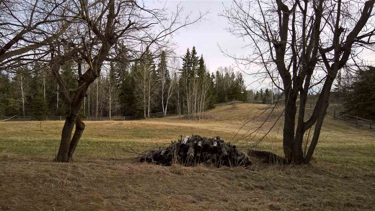 Photo 8: 51109 RGE RD 261 Road: Rural Parkland County Rural Land/Vacant Lot for sale : MLS(r) # E4061847