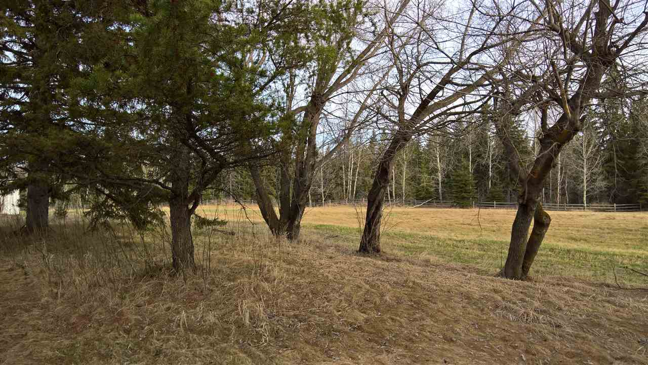 Photo 7: 51109 RGE RD 261 Road: Rural Parkland County Rural Land/Vacant Lot for sale : MLS(r) # E4061847