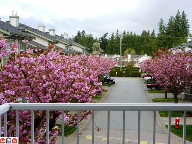 Photo 2: 30 8892 208th Street in Langley: Walnut Grove Townhouse for sale : MLS® # F1210685
