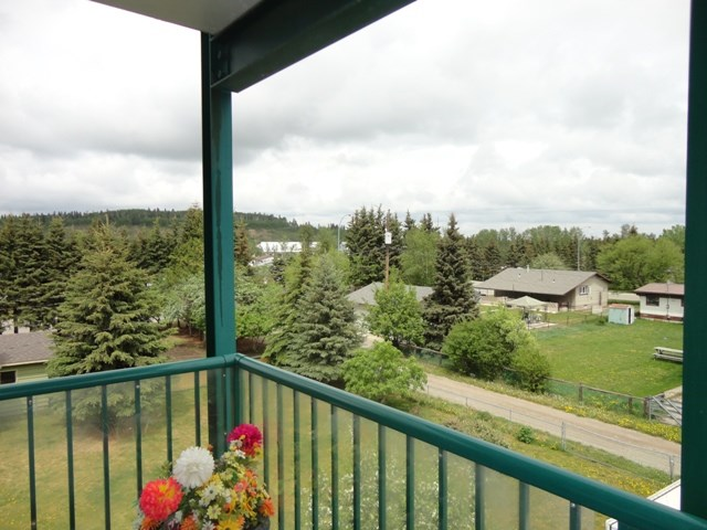 Photo 3: 304 101 3 Street NW: Sundre Condo for sale : MLS(r) # C4015441