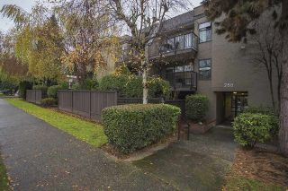 Main Photo: 211 288 E 14TH Avenue in Vancouver: Mount Pleasant VE Condo for sale (Vancouver East)  : MLS® # R2246835