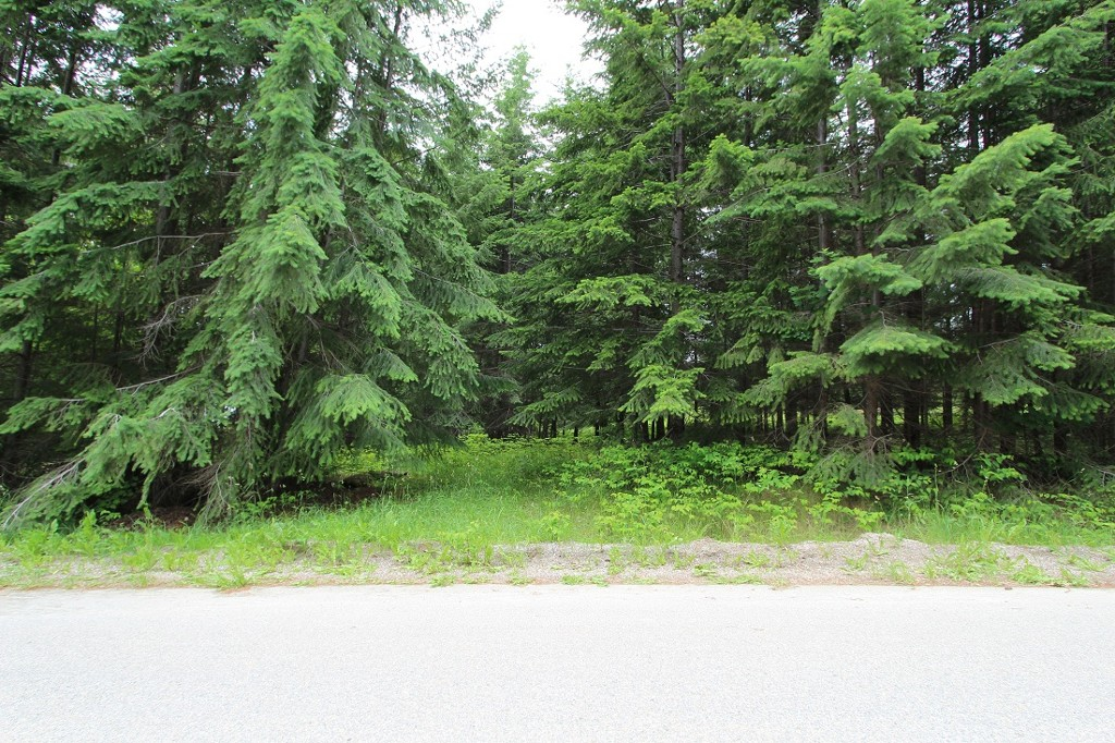 Main Photo: 108 Airstrip Road in Anglemont: North Shuswap Land Only for sale (Shuswap)  : MLS® # 10067018