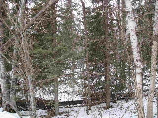 Main Photo: 6426 Twp Rd 544A: Rural Parkland County Rural Land/Vacant Lot for sale : MLS® # E4054862
