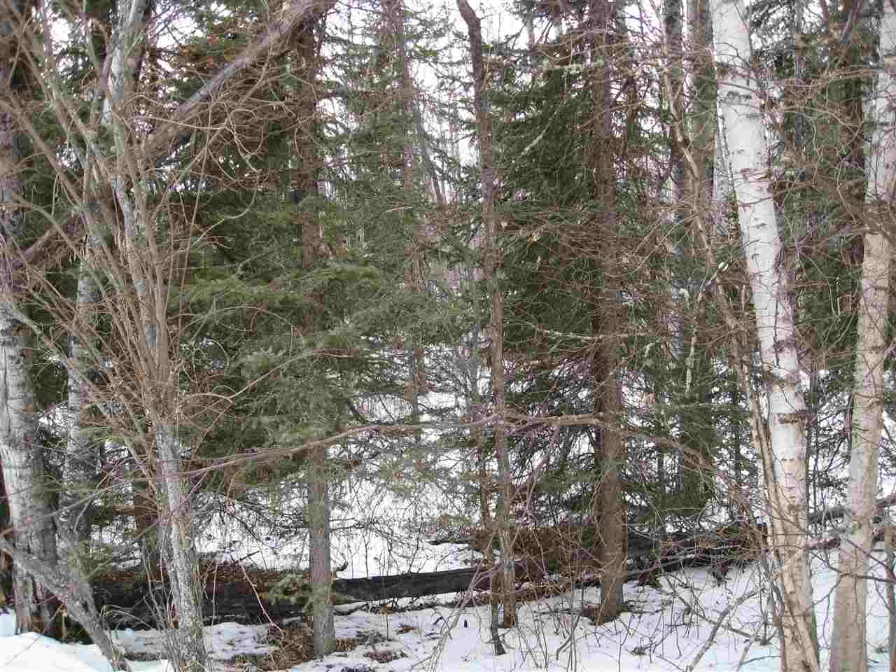 Main Photo: 6426 Twp Rd 544A: Rural Parkland County Rural Land/Vacant Lot for sale : MLS(r) # E4054862