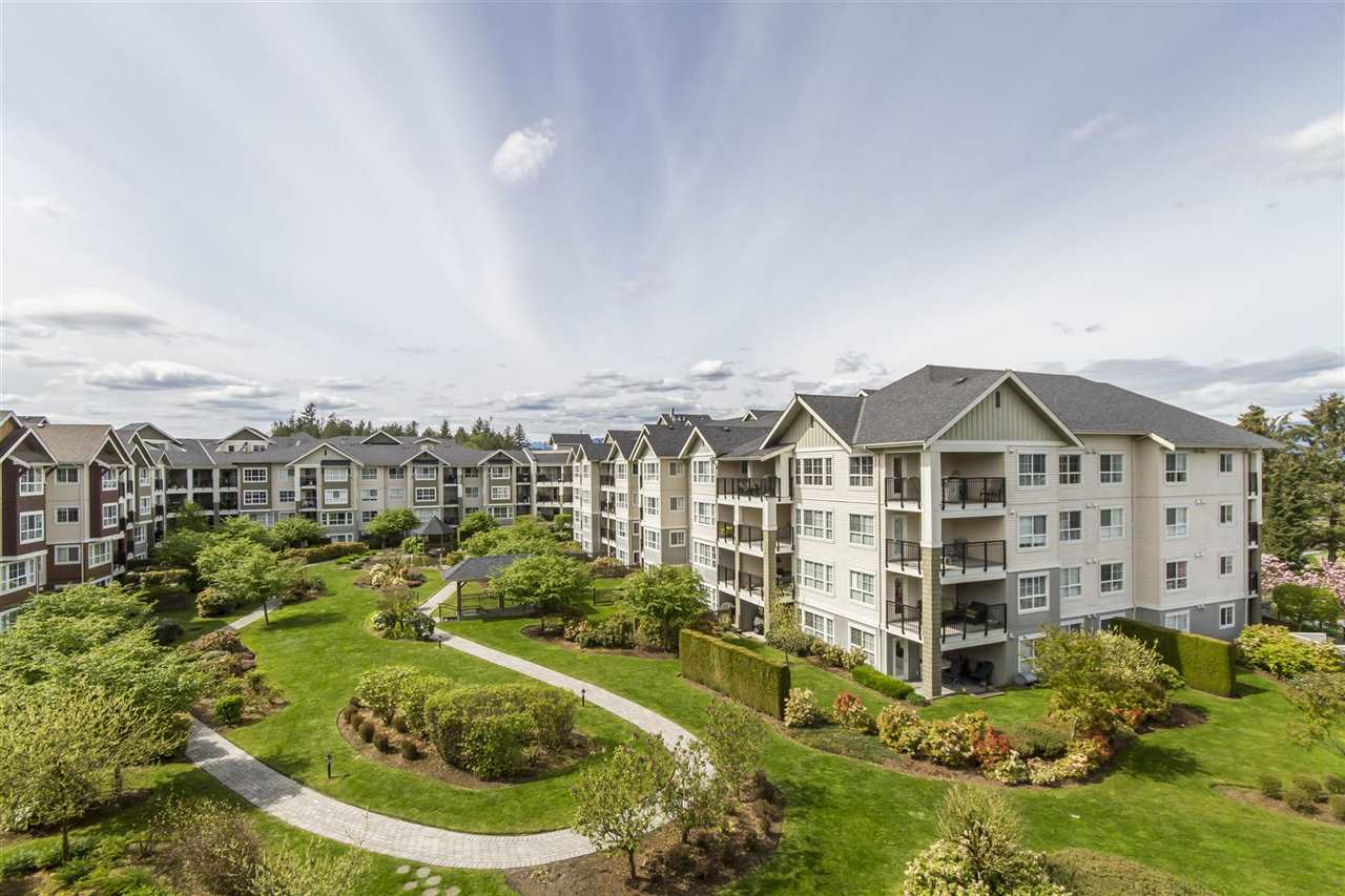 "Main Photo: 428 19677 MEADOW GARDENS Way in Pitt Meadows: North Meadows PI Condo for sale in ""THE FAIRWAYS"" : MLS® # R2161667"