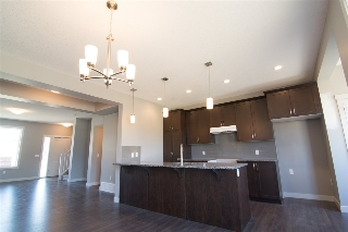 Main Photo:  in Edmonton: Zone 55 House for sale : MLS® # E4065374
