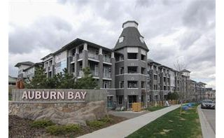 Main Photo: 126 25 Auburn Meadows Avenue SE in Calgary: Auburn Bay Apartment for sale : MLS® # c4136122