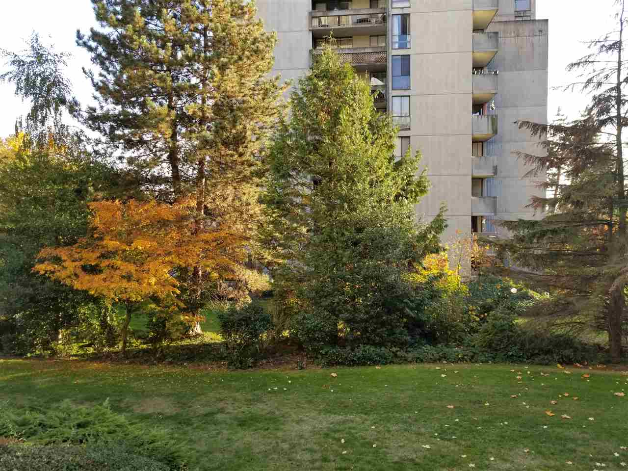 "Main Photo: 206 6689 WILLINGDON Avenue in Burnaby: Metrotown Condo for sale in ""KENSINGTON HOUSE"" (Burnaby South)  : MLS®# R2218866"