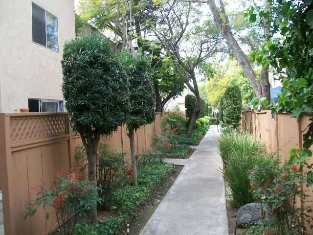 Photo 4: COLLEGE GROVE Townhome for rent : 3 bedrooms : 6871 Alvarado Road #5 in San Diego