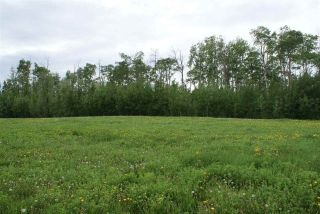 Main Photo: 220 Range Road 502 TWP: Rural Leduc County Rural Land/Vacant Lot for sale : MLS® # E4022012