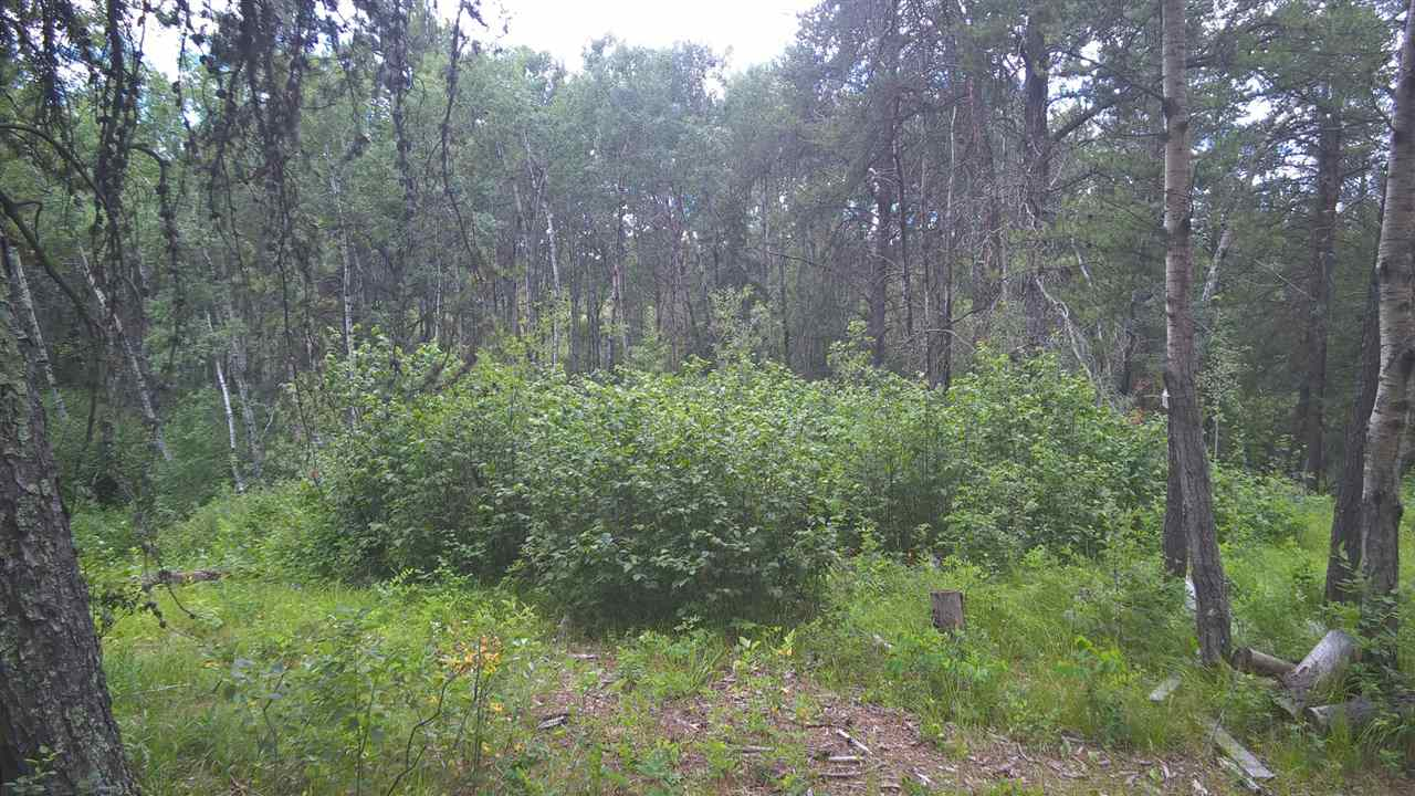 Photo 7: 3A 51410-Rge Rd 271: Rural Parkland County Rural Land/Vacant Lot for sale : MLS(r) # E4028487