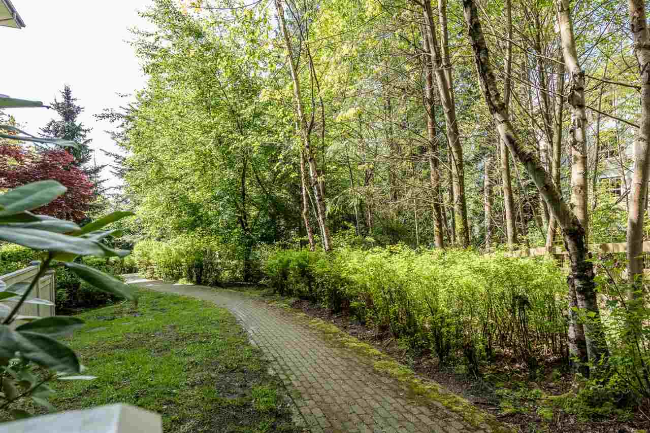 Photo 13: 105 2988 SILVER SPRINGS BOULEVARD in Coquitlam: Westwood Plateau Condo for sale : MLS® # R2165302