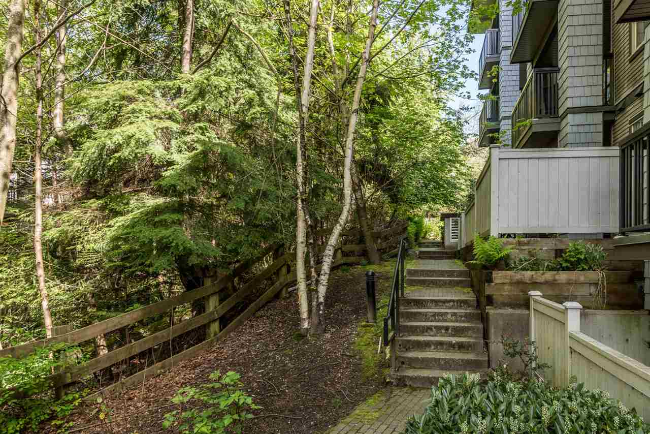 Photo 14: 105 2988 SILVER SPRINGS BOULEVARD in Coquitlam: Westwood Plateau Condo for sale : MLS® # R2165302