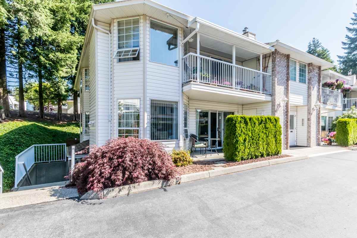 "Main Photo: 7 2921 HORN Street in Abbotsford: Central Abbotsford Townhouse for sale in ""Birchwood Terrace"" : MLS®# R2183526"