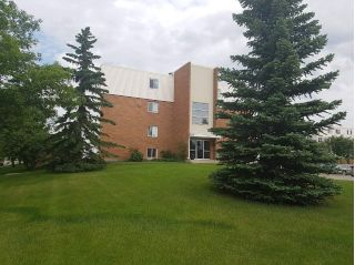 Main Photo: 247 17120 86 Avenue in Edmonton: Zone 20 Condo for sale : MLS® # E4073674