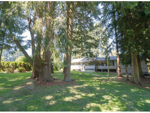 Photo 5: 13885 18TH Avenue in Surrey: Sunnyside Park Surrey House for sale (South Surrey White Rock)  : MLS(r) # F1431118