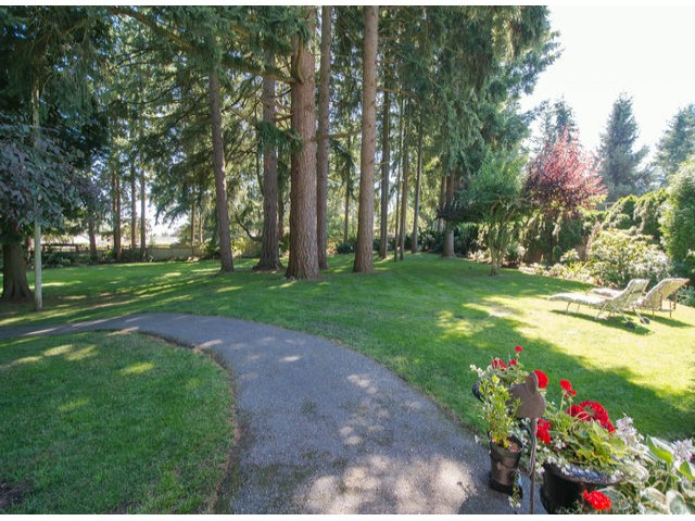 Photo 4: 13885 18TH Avenue in Surrey: Sunnyside Park Surrey House for sale (South Surrey White Rock)  : MLS(r) # F1431118