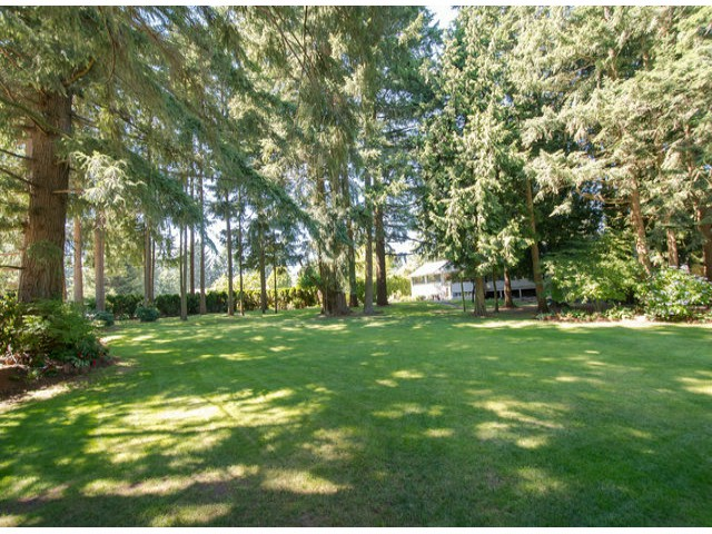 Photo 3: 13885 18TH Avenue in Surrey: Sunnyside Park Surrey House for sale (South Surrey White Rock)  : MLS(r) # F1431118
