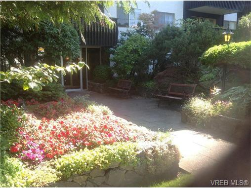 Main Photo: 303 1035 McClure Street in VICTORIA: Vi Downtown Condo Apartment for sale (Victoria)  : MLS®# 358934