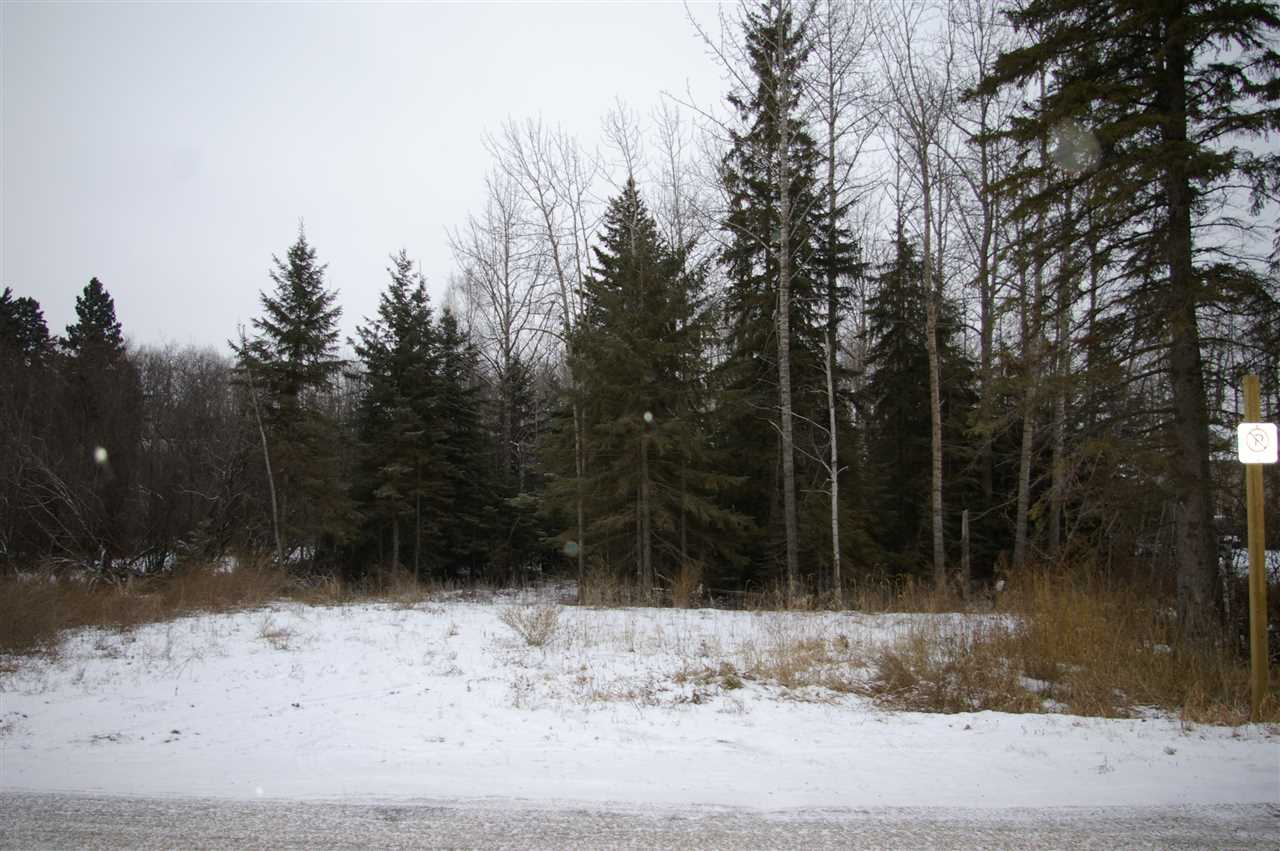 Main Photo: 52415 Rge Rd 20: Rural Parkland County Rural Land/Vacant Lot for sale : MLS(r) # E4044391