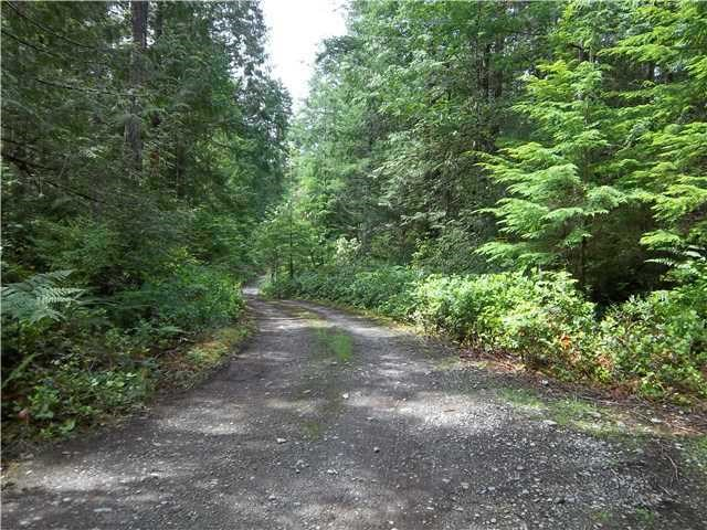 This is the well established road along the Easement to get to the center or top 1/3 of the property.