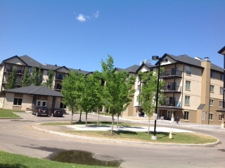 Main Photo: 216 10520 56 Avenue NW in Edmonton: Zone 15 Condo for sale : MLS® # E4057292