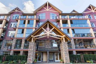 Main Photo: 523 8288 207A Street in Langley: Willoughby Heights Condo for sale : MLS®# R2260234