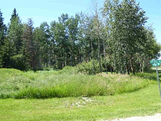 Main Photo: #6201 Shedden Drive: Rural Lac Ste. Anne County Rural Land/Vacant Lot for sale : MLS(r) # E4028285