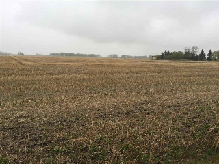 Main Photo: 60314 Rge Rd 252: Rural Westlock County Rural Land/Vacant Lot for sale : MLS(r) # E4057841