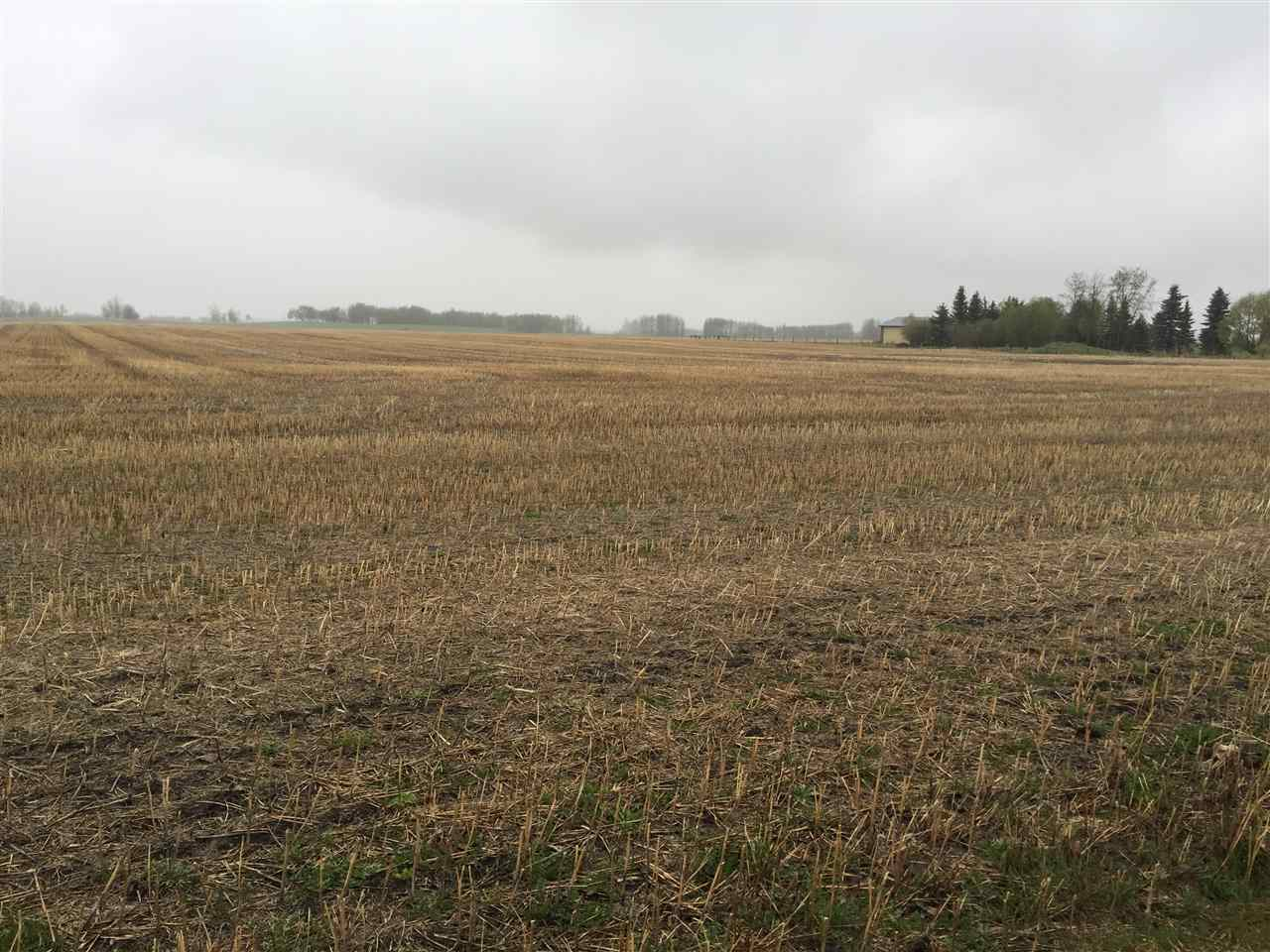 Main Photo: 60314 Rge Rd 252: Rural Westlock County Rural Land/Vacant Lot for sale : MLS® # E4057841