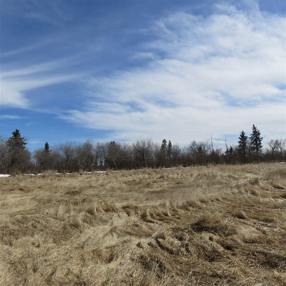 Main Photo: TWP 485 RR 154: Rural Beaver County Rural Land/Vacant Lot for sale : MLS® # E4058738