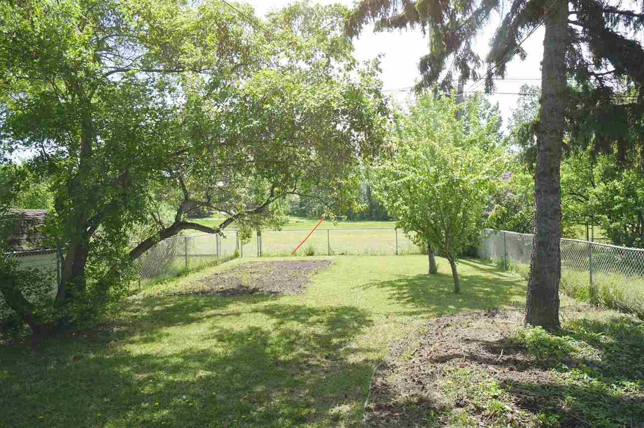Private Back Yard Backing Onto Green Space