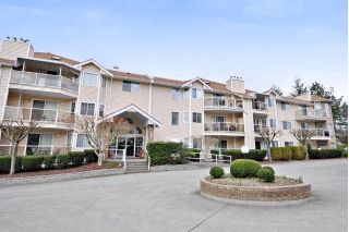 "Main Photo: 321 22611 116 Avenue in Maple Ridge: East Central Condo for sale in ""Rosewood Court"" : MLS® # R2249041"