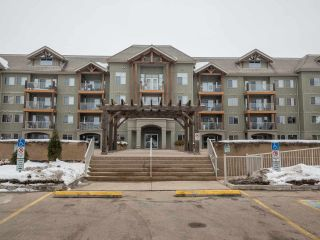 Main Photo: 133 278 SUDER GREENS Drive in Edmonton: Zone 58 Condo for sale : MLS®# E4127644