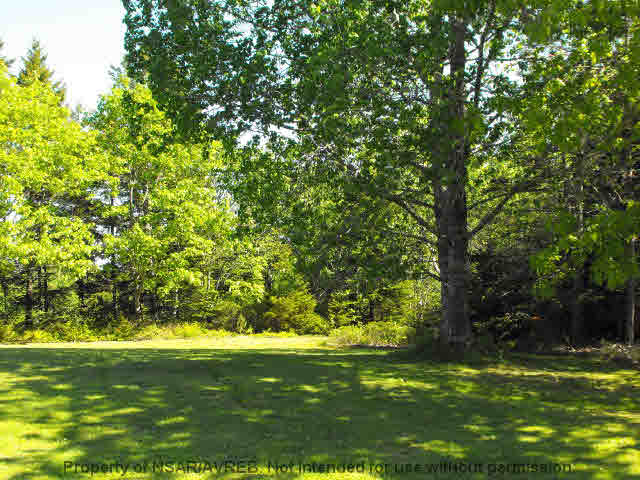 Main Photo: LOT 2 COOKS BROOK DIVERSION HWY 332 in Bayport: 405-Lunenburg County Vacant Land for sale (South Shore)  : MLS®# 5027947