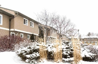 Main Photo: 2542 79 Street in Edmonton: Zone 29 Townhouse for sale : MLS(r) # E4054151