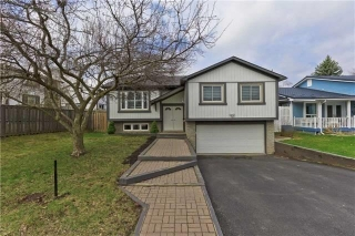 Main Photo: 6784 Segovia Road in Mississauga: Meadowvale House (Bungalow-Raised) for sale : MLS® # W3792340