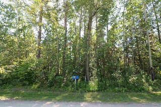 Main Photo: 3 Birch Avenue: Rural Lac Ste. Anne County Rural Land/Vacant Lot for sale : MLS® # E4077634