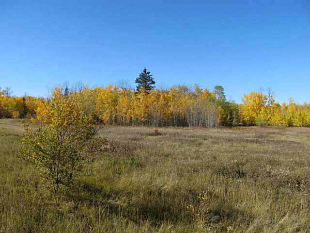 Photo 18: 36 56110 Rge Rd 13: Rural Lac Ste. Anne County Rural Land/Vacant Lot for sale : MLS® # E4037640