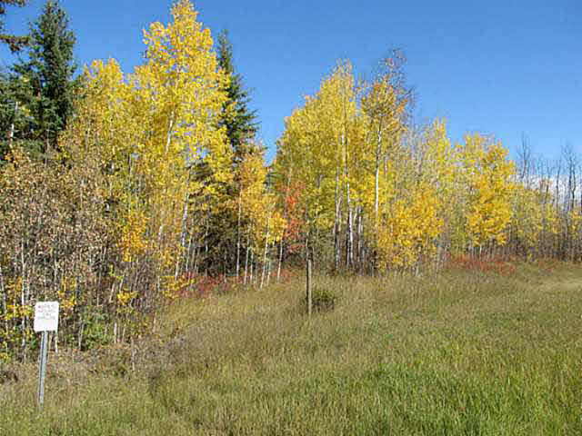 Photo 12: 36 56110 Rge Rd 13: Rural Lac Ste. Anne County Rural Land/Vacant Lot for sale : MLS® # E4037640