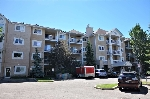 Main Photo: 236 17447 98A Avenue in Edmonton: Zone 20 Condo for sale : MLS(r) # E4070242